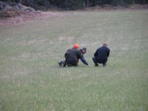 Några av deltagarna letar blodspår vid den fingerade skottplatsen